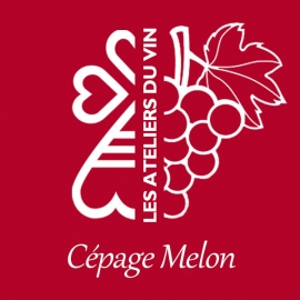 ATELIER CÉPAGE MELON - Mardi 18 Juin 2019